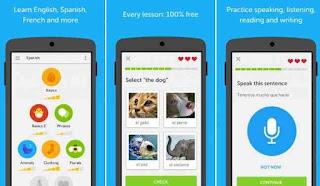 duolingo apk download