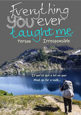 Everything you ever taught me - by Person Irresponsible - available on Amazon