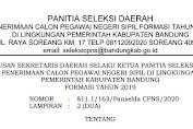 Pemkab Bandung: Hasil SKD CAT CPNS Formasi Tahun 2019