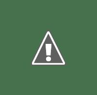 موظف خدمة الموارد البشرية HR Service Officer   MIG jobs