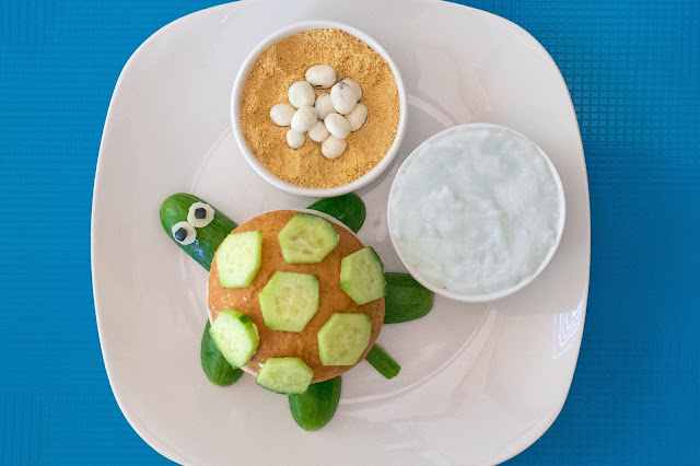 How to Make a Cucumber Sea Turtle Lunch