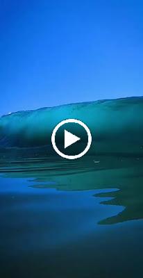 Amazing waves 🌊 by @robbiecrawford #gopro #waves #shark