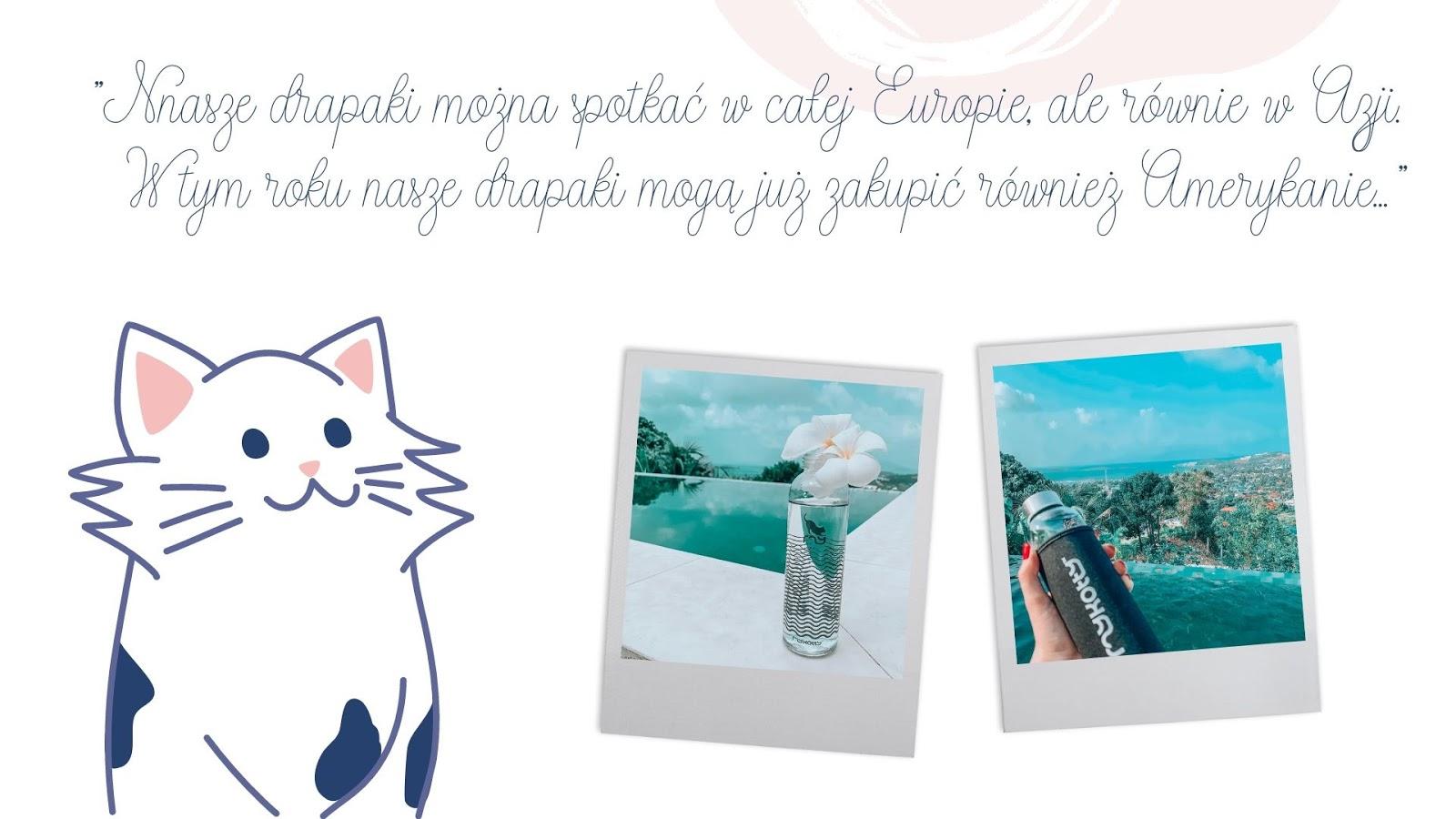 10 drapaki ekologiczne dla kota poduszki polska marka gdzie kupić zabawki gadżety dla kota dla kociarzy poduszki naturalne wypełnienie dla kotów butelki miski mykotty cena opinia