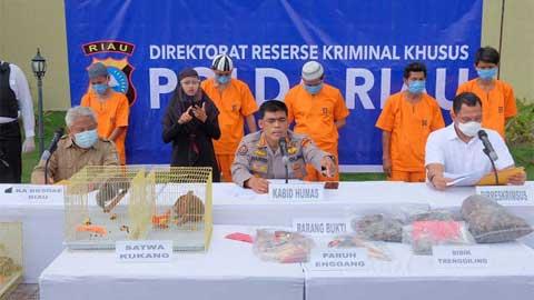 Polisi tunjukkan barang bukti dan tersangka penjualan hewan dilindungi