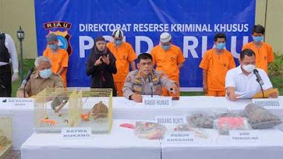 Perdagangkan Hewan Dilindungi, Dua Warga Tanah Datar Diamankan Polda Riau