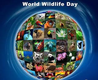 ден на дивата природа