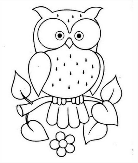 sketsa gambar burung hantu mudah