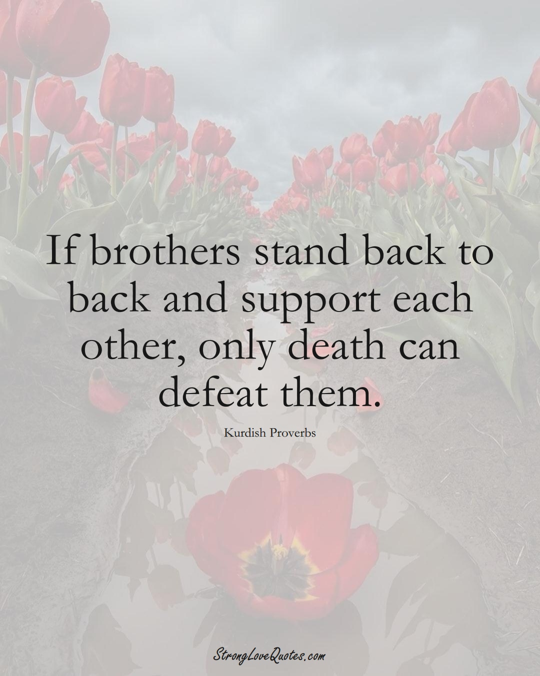 If brothers stand back to back and support each other, only death can defeat them. (Kurdish Sayings);  #aVarietyofCulturesSayings