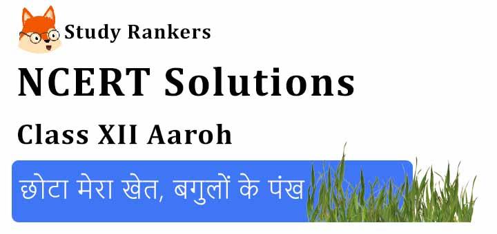 NCERT Solutions for Class 12 Hindi Aaroh Chapter 10 छोटा मेरा खेत, बगुलों के पंख