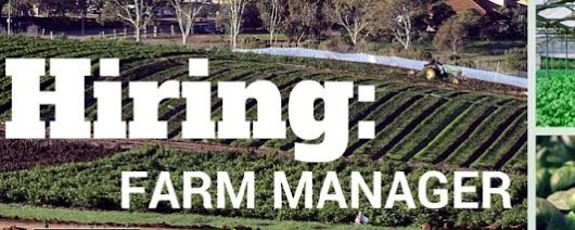 HIRING: Urgent need for 3 Farm Managers - Leading Organics