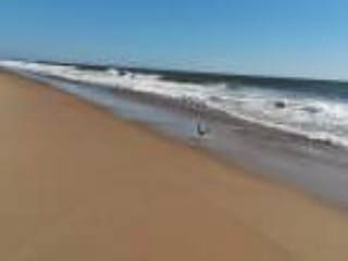 Ocean City Condo, 2 BR Beach Rental