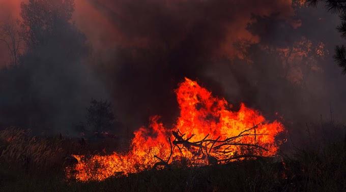 Teljes terjedelmében égett egy tizenöt négyzetméteres melléképület Hajdúszováton