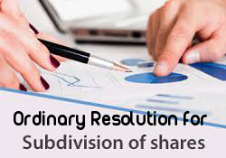Ordinary-Resolution-Subdivision-Shares