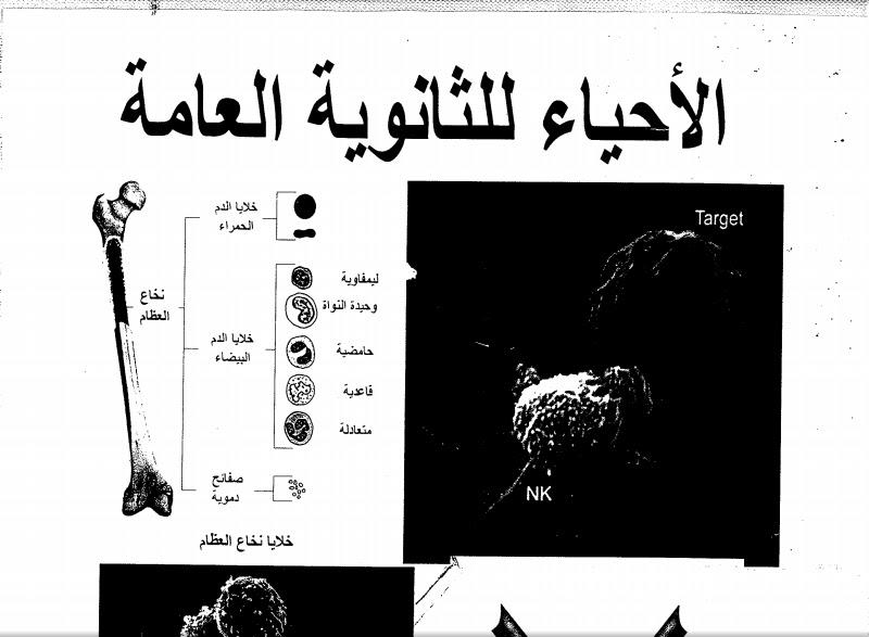 تحميل اقوى المراحعات النهائية فى الاحياء للثانويه العامة للاستاذ / حسن محرم - تحفة