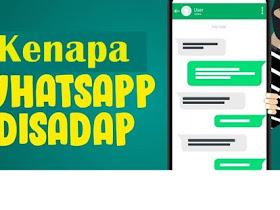 Cara Mengetahui WhatsApp Disadap dan ini Solusinya