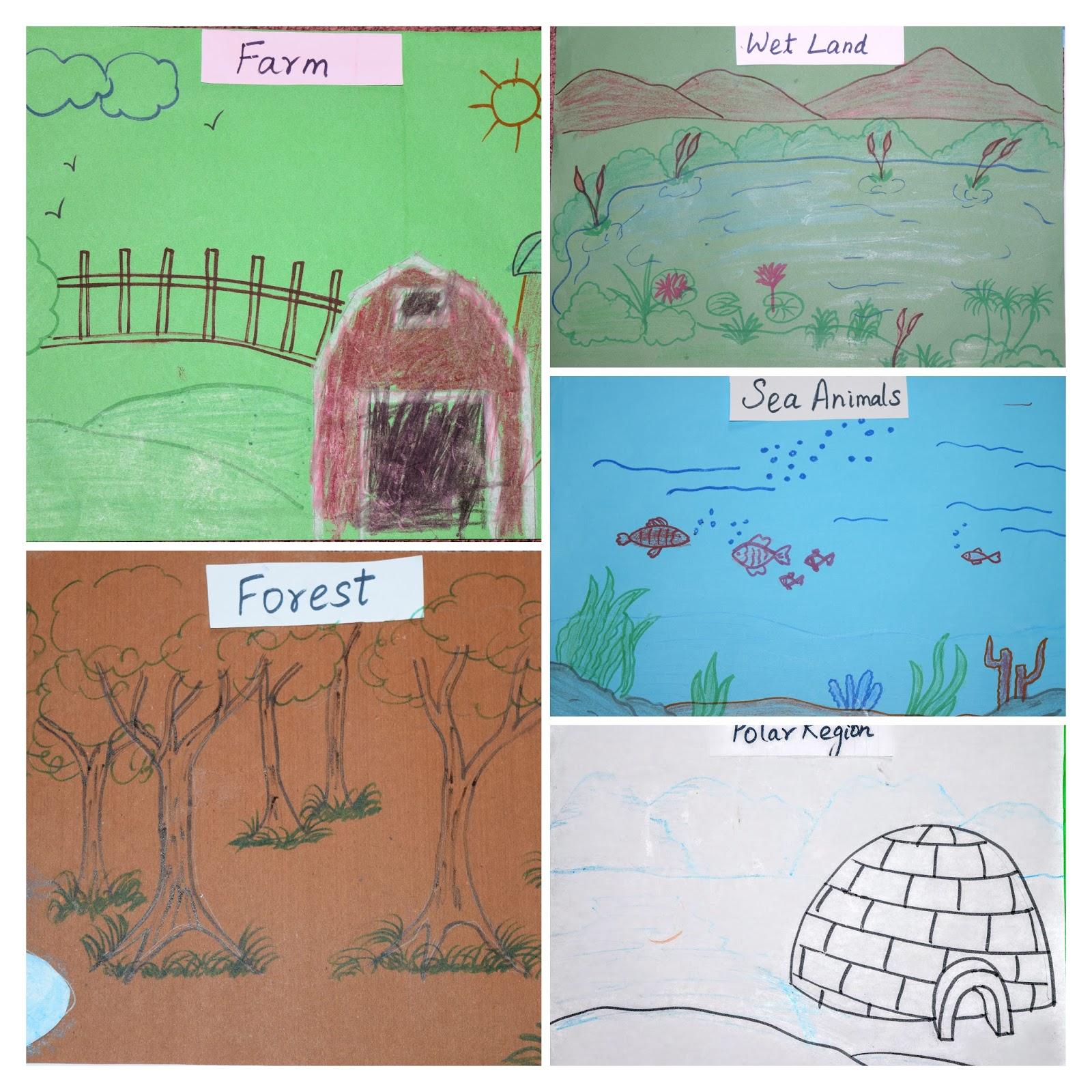 Sindhu S Cocoon Animals And Habitats