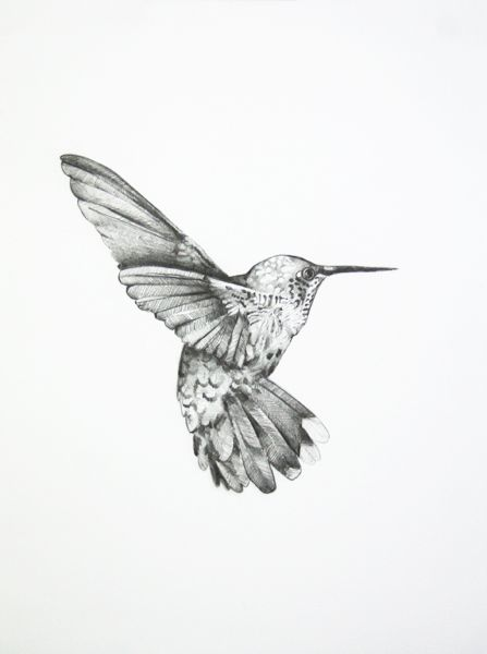 Lovely Hummingbird Tattoos For Women