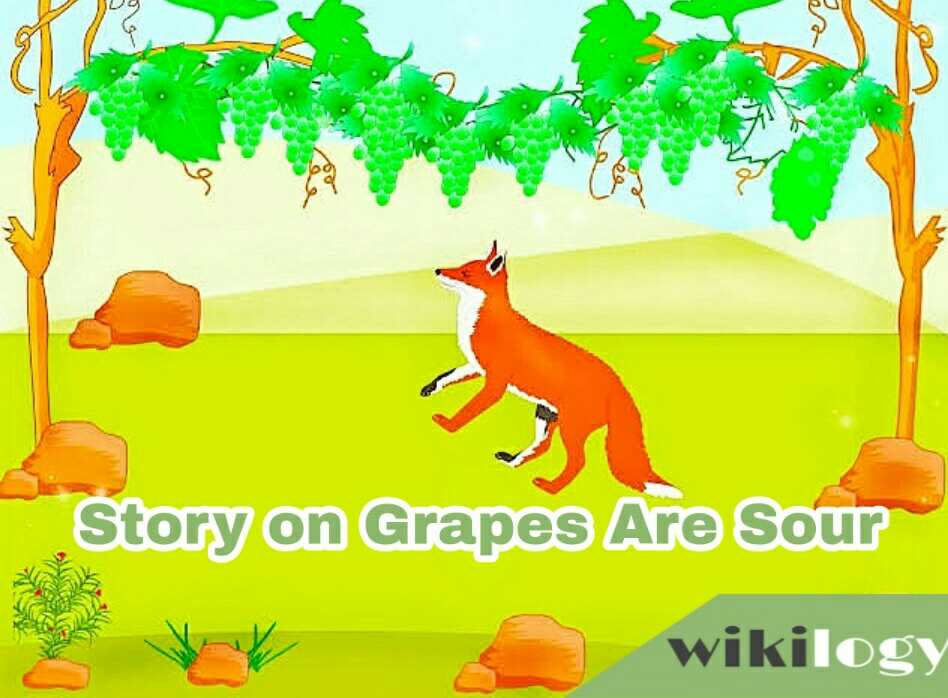 Grapes Are Sour Completing Story / Fox and Grapes