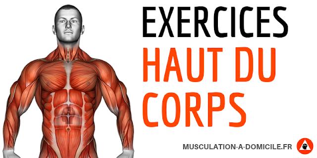 musculation à domicile exercices musculation haut du corps