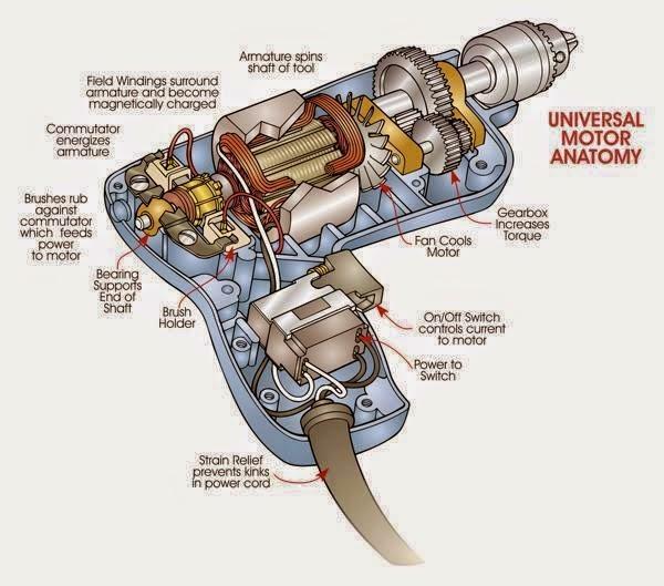 Universal Motor Anatomy
