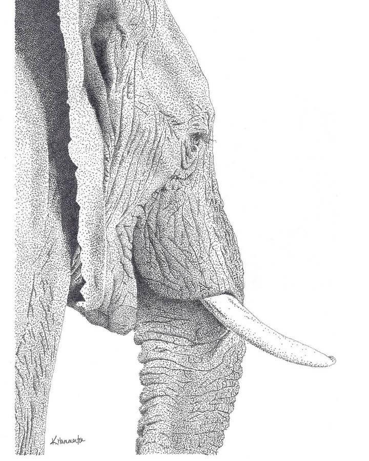 04-Elephant-profile-Kelsey-Hammerton-www-designstack-co