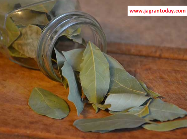 A Miraculous Medicine Sage Bay Leaves