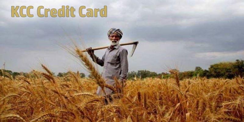 किसान क्रेडिट कार्ड योजना 2021: KCC किसान कार्ड लिस्ट, लाभार्थी सूची, कार्ड स्टेटस | सरकारी योजनाएँ