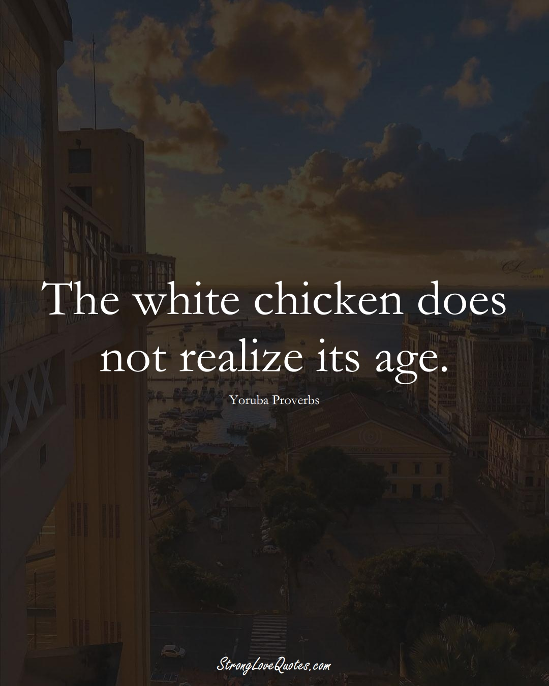 The white chicken does not realize its age. (Yoruba Sayings);  #aVarietyofCulturesSayings