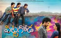 Pittagoda 2016 Telugu Movie Watch Online