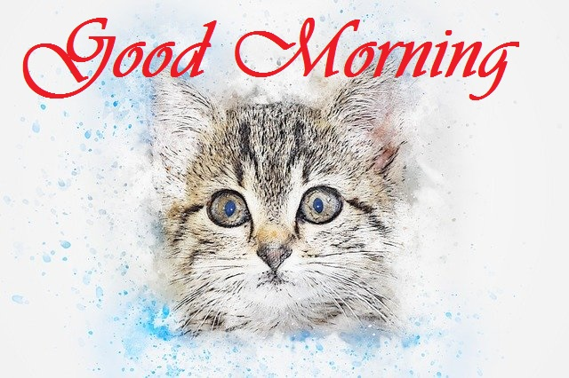 good morning message with cat painting image