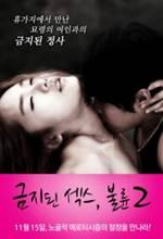 Forbidden Sex Affair 2 2012 720p HDRip 450MB