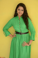 Geethanjali in Green Dress at Mixture Potlam Movie Pressmeet March 2017 005.JPG