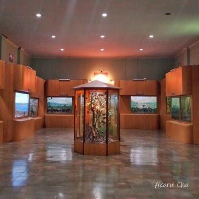 museum-zoologi-kebun-raya-bogor
