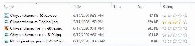 Menggunakan gambar WebP mempercepat memuat blog - mantankode