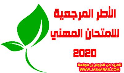 مواصفات اختبارات الكفاءة المهنية 2020