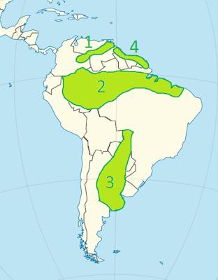 Niziny Ameryki Południowej