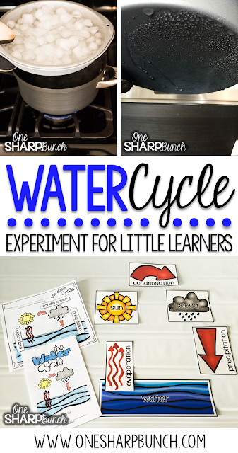 Teach your kindergarten students all about rain and clouds using this water cycle experiment for kids!  Perfect for a rainy day this spring, or as a complement to your weather activities!  Follow these super simple steps using common household items!