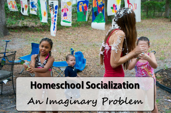 Homeschool Socialization is NOT a real problem.