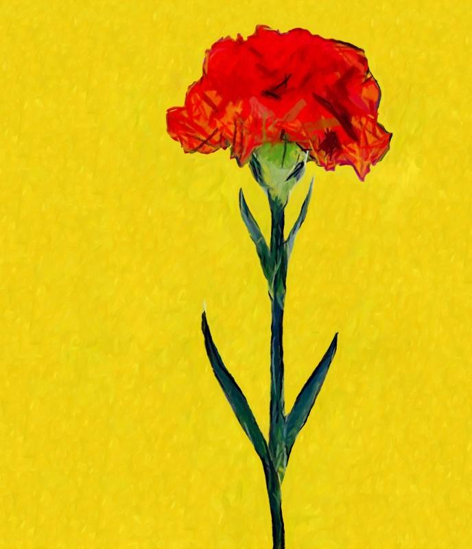 Flor de la clavellina (Joan Cabot)