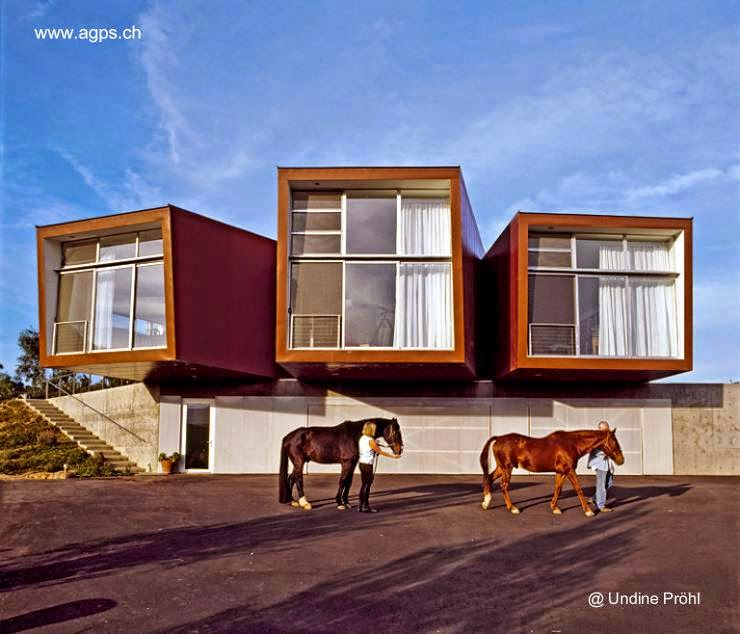 Residencia contemporánea orgánica en California