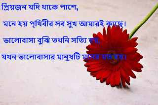 bangla love sms pic