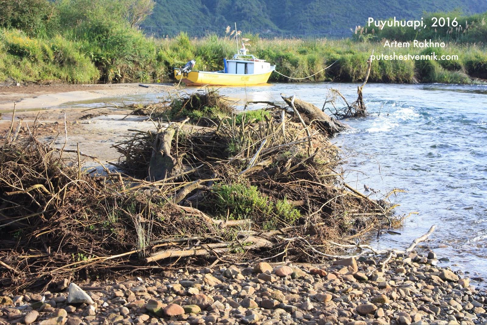 Бурелом и катер на реке в Пуюапи