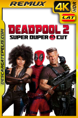 Deadpool 2 Unrated (2018) 4k BDRemux HDR Latino – Ingles