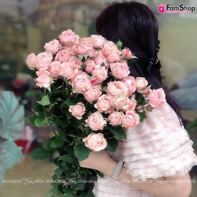 Hoa hồng chùm polla HHC0210