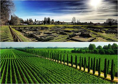 """Il """"Cru"""" di Aquileia - Un viaggio tra storia, vigne e cantine virtuose"""