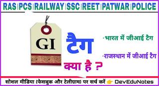 राजस्थान में जीआई टैग