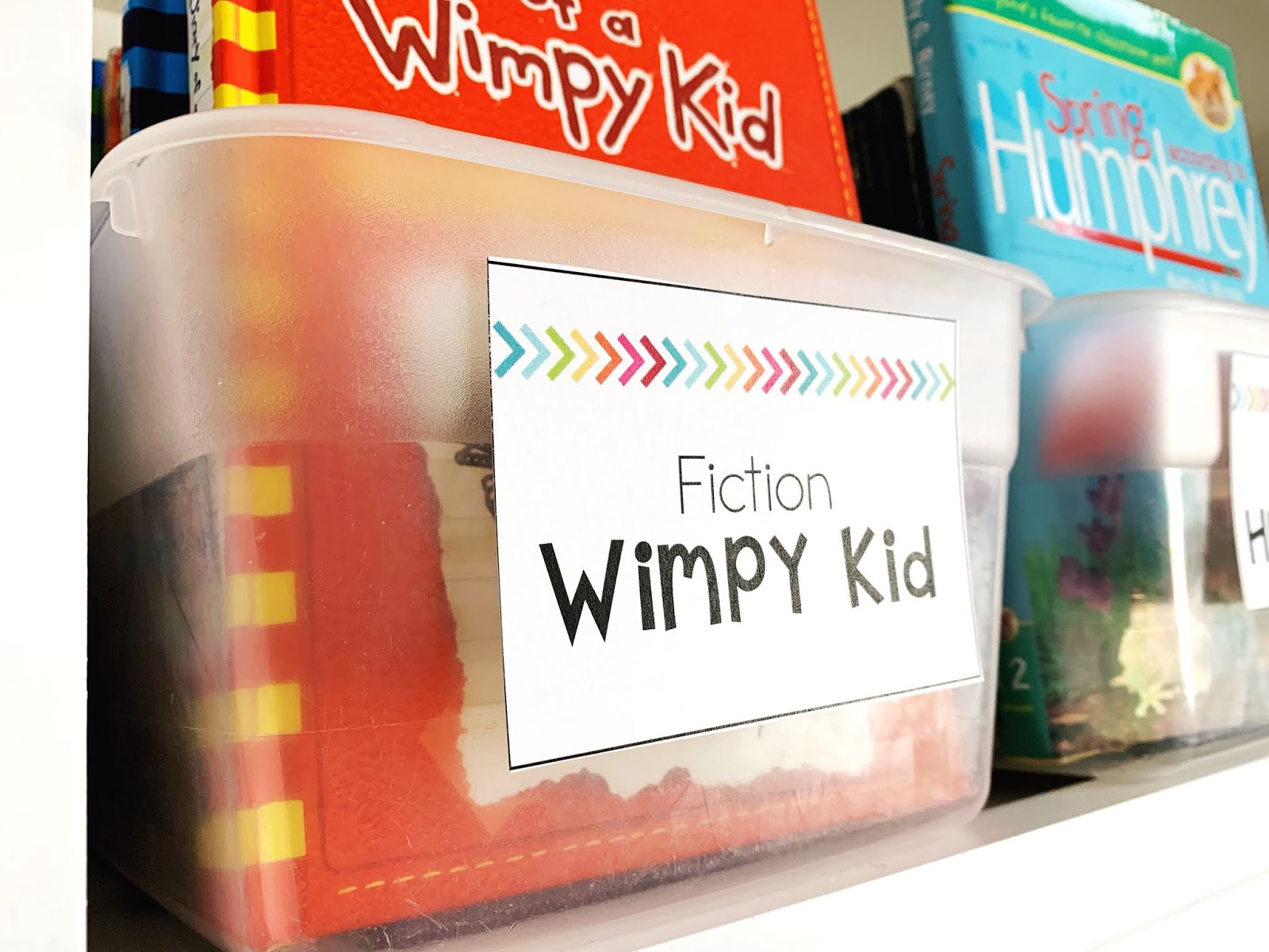 Tips For Setting Up Your Classroom Library - Not So Wimpy