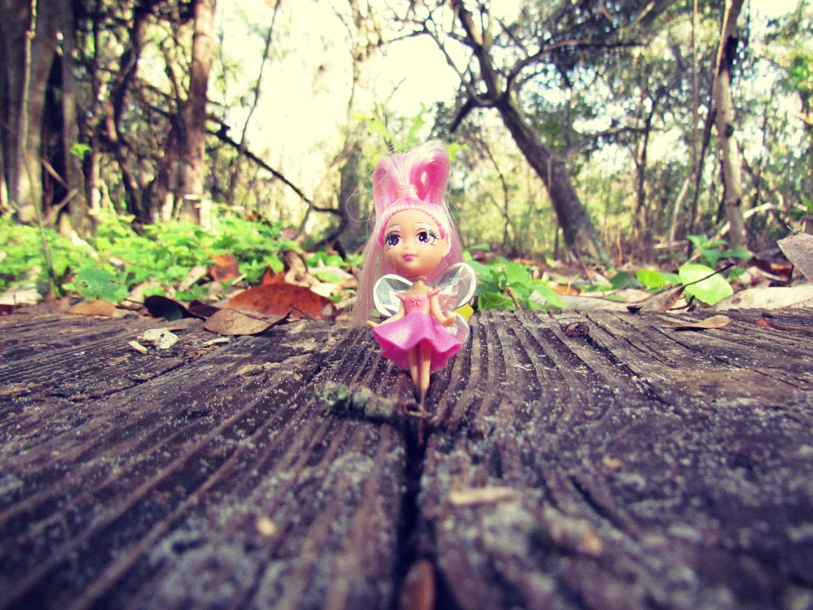 A pink toy fairy in a woodland setting in nature + Florida living lifestyle