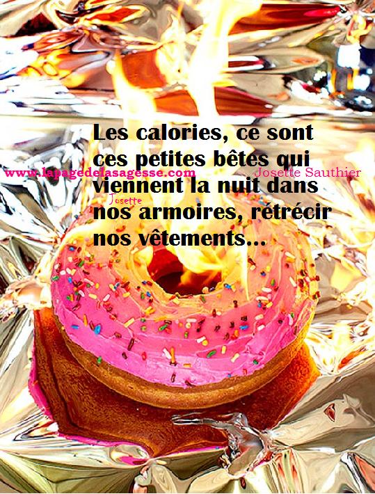 la page de la sagesse   citation humoristique sur les calories