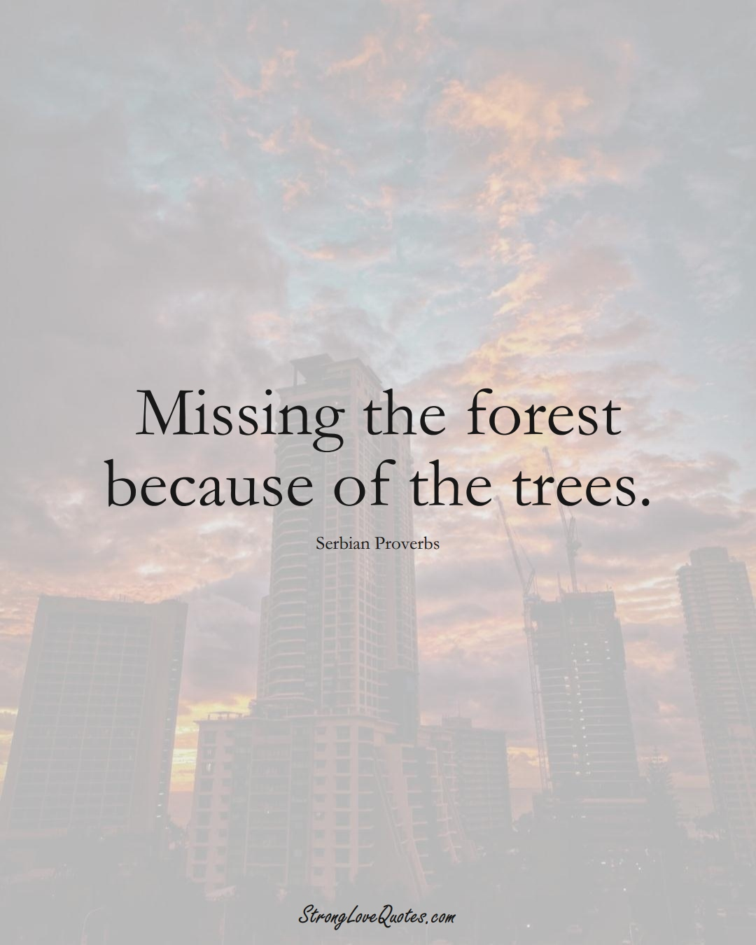Missing the forest because of the trees. (Serbian Sayings);  #EuropeanSayings